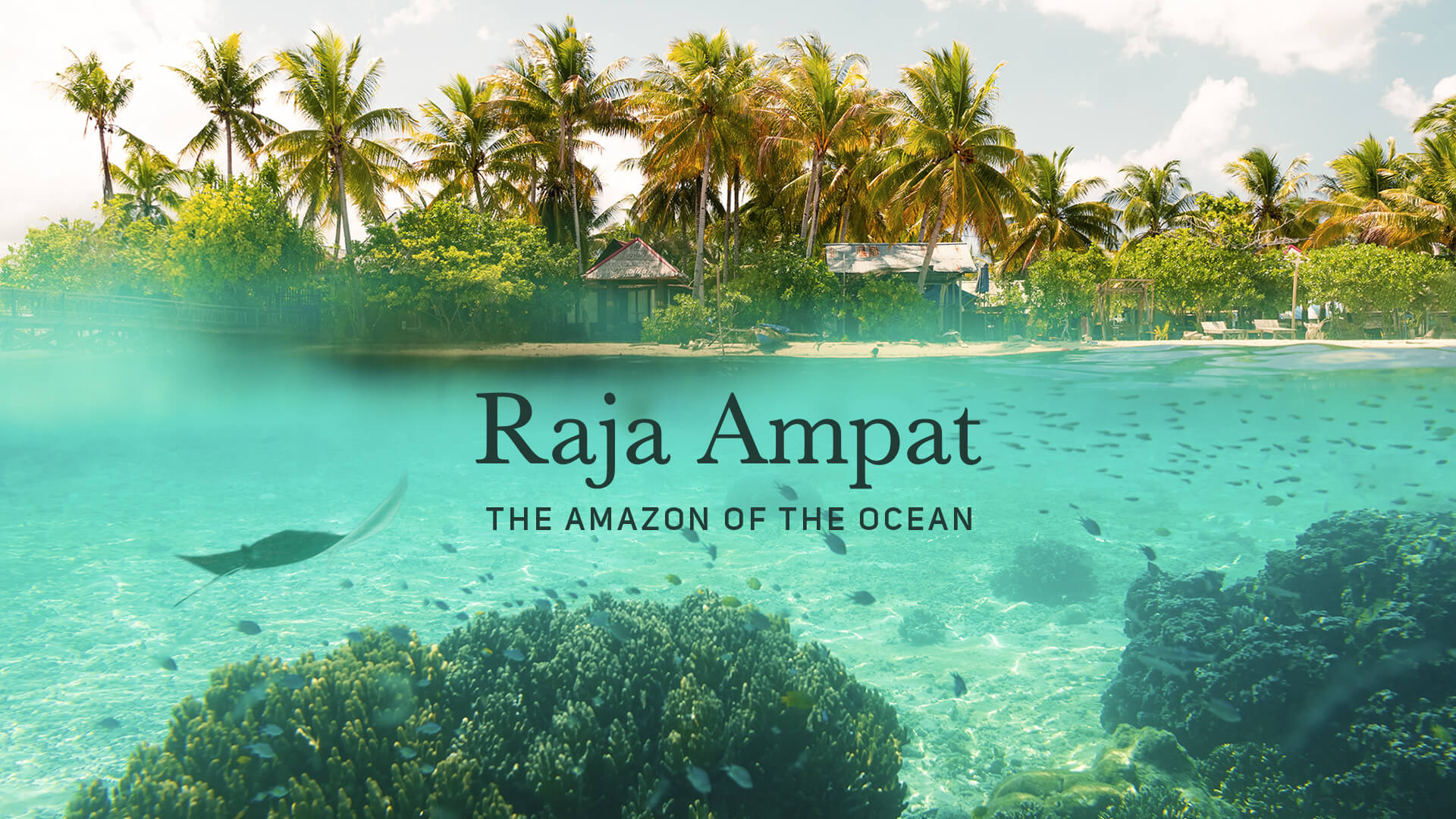 Raja Ampat Video Cover